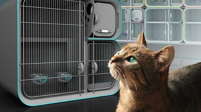 Sera quarantine cat cage_1