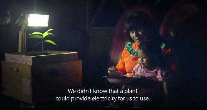 Plant Lamp by UTEC_2