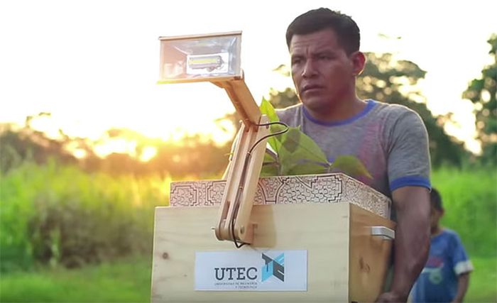 Plant Lamp by UTEC_5