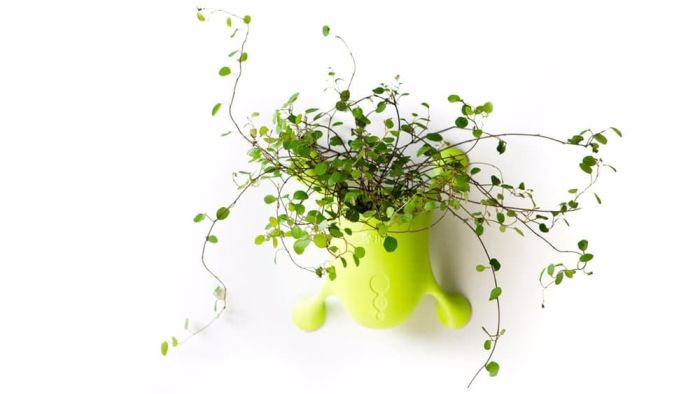 Livi Portable Planter-1