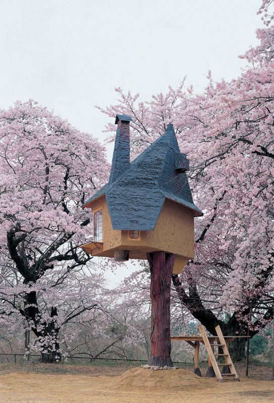 cherryblossom treehouse