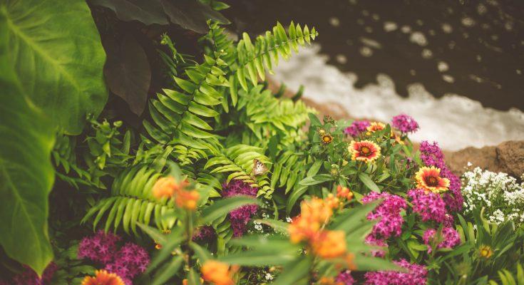 trasform your garden into a work of art