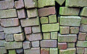 moldy bricks