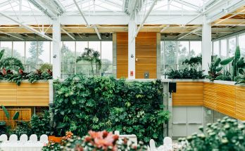 interior gardening